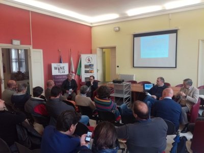 Heroic viticulture: opportunities, development and research, Italy
